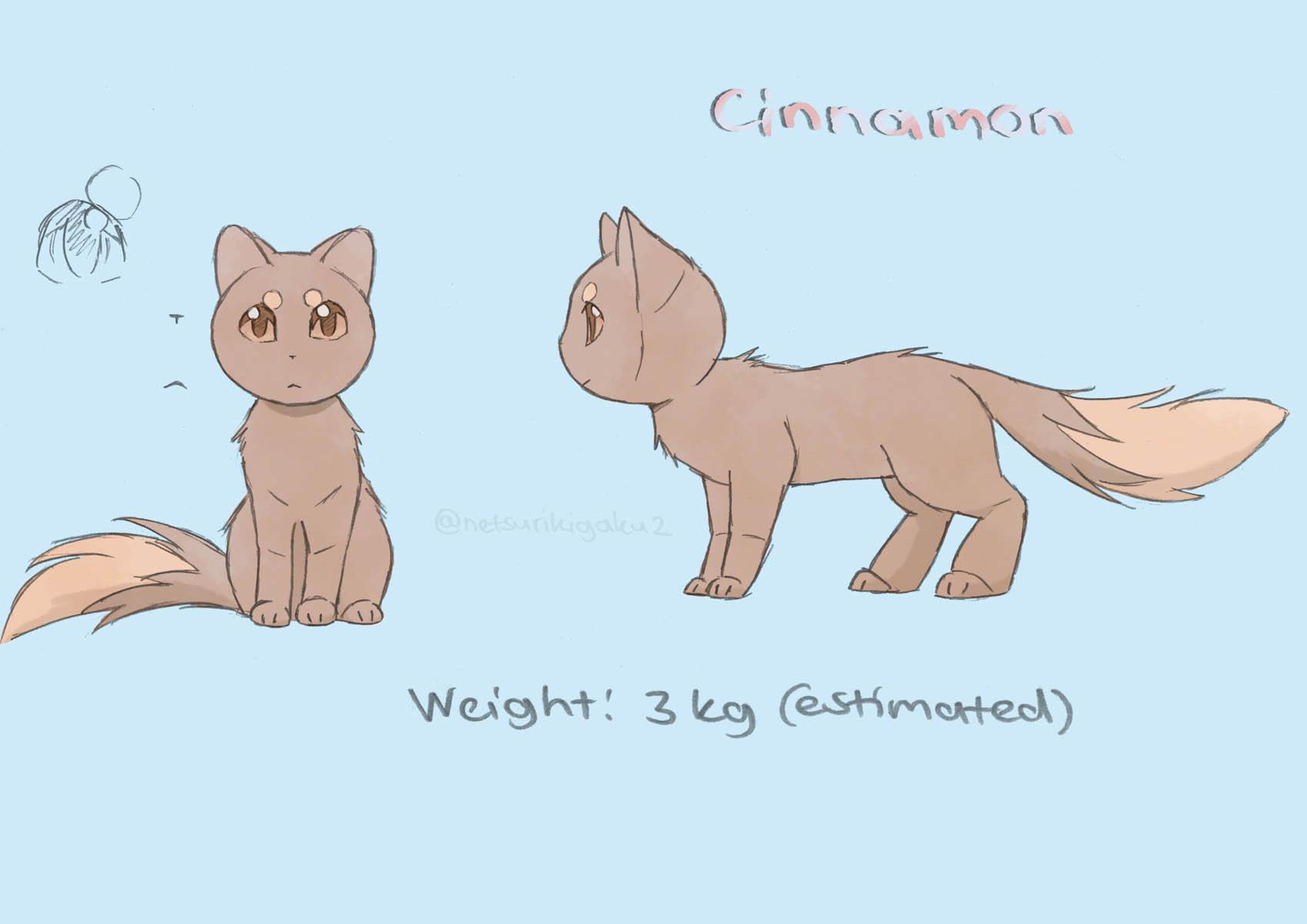Cinnamonのキャラクター紹介
